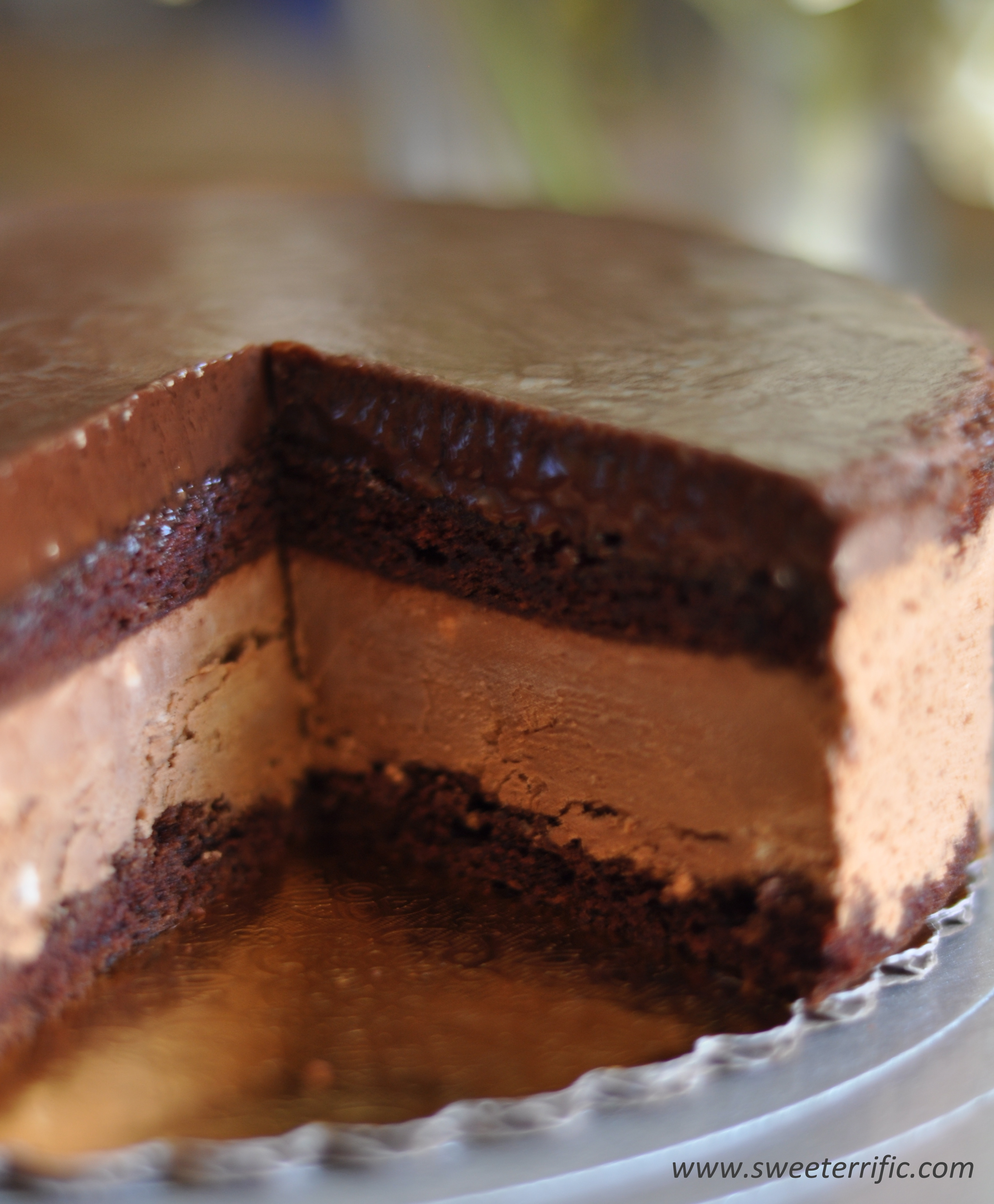 Double Chocolate Cake With Ganache Frosting
