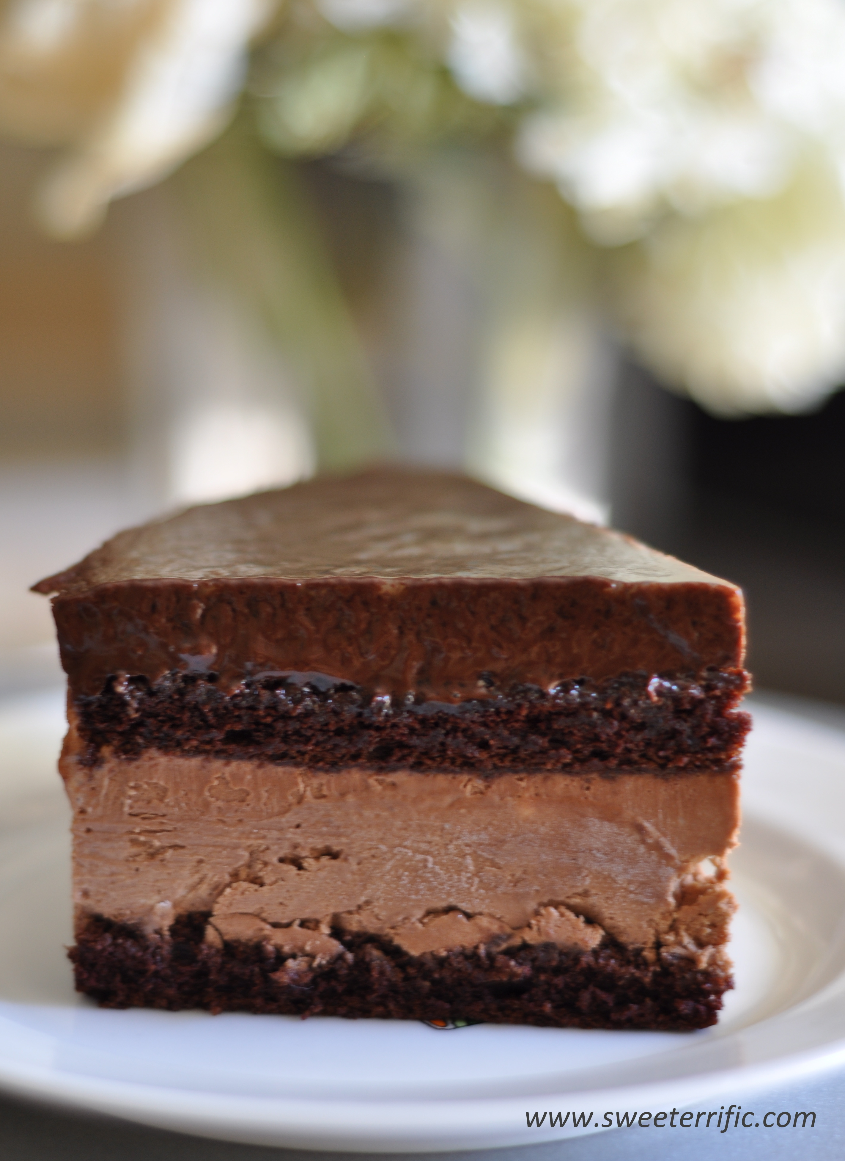 Chocolate Mousse Cake | Sweeterrific